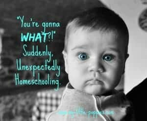 You're Gonna What? Suddenly, Unexpectedly Homeschooling