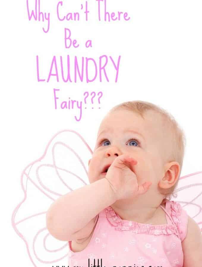Laundry Fairy??