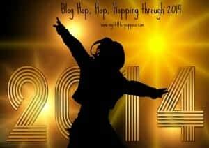 Blog Hop, Hop, Hopping through 2014
