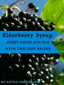 Elderberry Syrup Fight Colds and Flu with this Easy Recipe