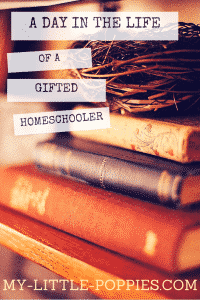 A Day in the Life of a Gifted Homeschooler