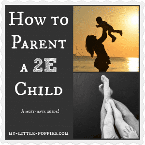 How to Parent a 2E Child