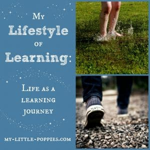 My Lifestyle of Learning