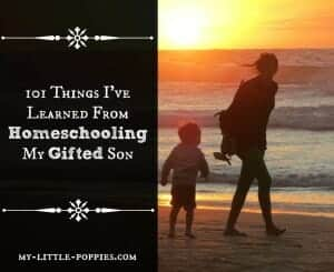 101 Things I've Learned From Homeschooling My Gifted Son