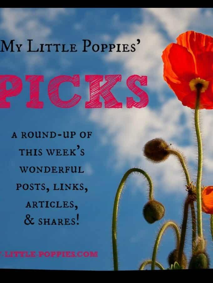 My Little Poppies' Picks  {weekend wrap-up}