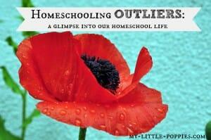 homeschool gifted homeschooler day in the life schedule routine
