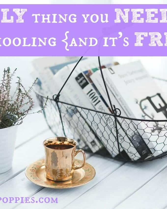 The ONLY Thing You Need for Homeschooling {and it's FREE!}