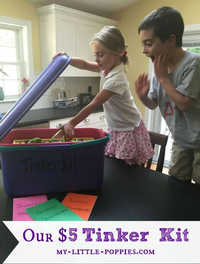 Our Five Dollar Tinker Kit