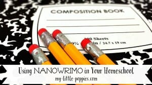 NaNoWriMo, National Novel Writing Month, YWP, Young Writer's Program, children, kids, writing, November, writers, authors, books, novels