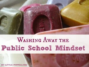Washing Away the Public School Mindset