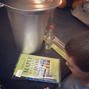 maple syrup, maple sugaring, homeschool, homeschool lesson, tap my trees, maple sugaring kit