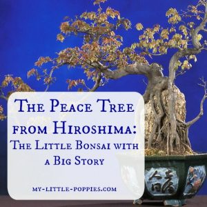 The Peace Tree from Hiroshima The Little Bonsai with a Big Story