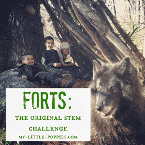 Forts The Original STEM Challenge