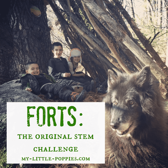 Forts: The Original STEM Challenge