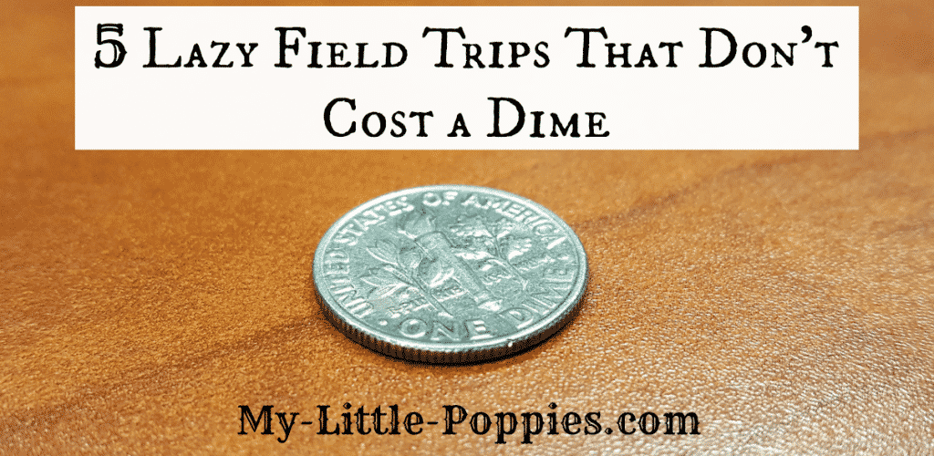 5 Lazy Field Trips that Don't Cost a Dime