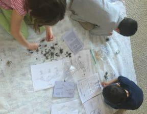 art, nature, science, unit study, owl, homeschooling, homeschool