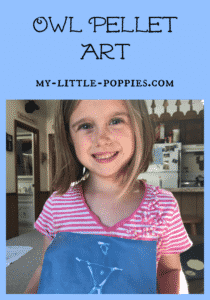 online art lessons, art class, video lessons, art, homeschool, homeschooling, Easy Outdoor Art, 10+ Art Books for Children | My Little Poppies, art study, artists, children's books, art books, homeschool, homeschooling, create, creativity, art class, art course, artist study, unit study, teaching art, art lessons, art appreciation, nature, art, science, unit study, owls, homeschool, homeschooling