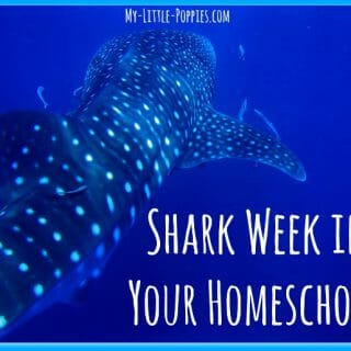 Shark Week in Your Homeschool