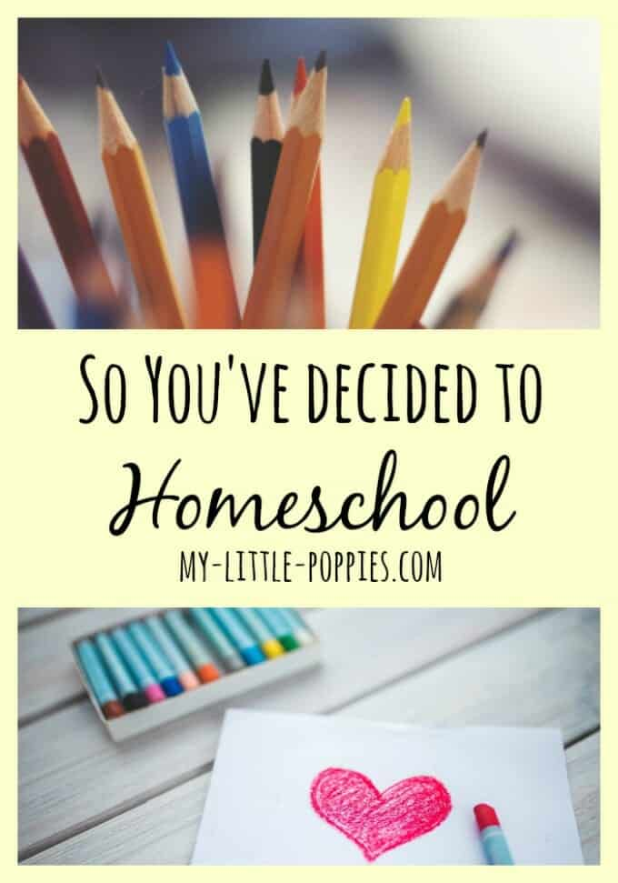 So You've Decided to Homeschool Pin, homeschooler, homeschooling, education