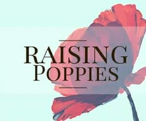 About My Little Poppies, homeschooling, homeschool, gifted, giftedness, twice-exceptional, 2e, parenting, motherhood, books, book club, raising poppies
