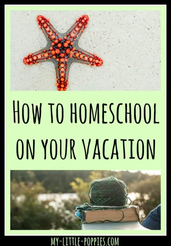 homeschooling, homeschooler, travel, not at homeschooling, how-to-homeschool-on-your-vacation-my-little-poppies