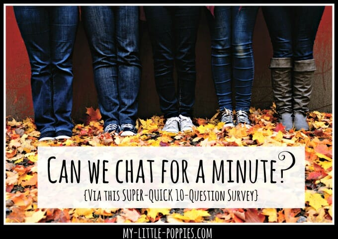 can-we-chat-for-a-minute 2016 My Little Poppies reader survey
