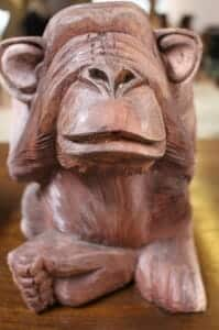 monkey-236864_1280