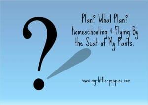 Plan What Plan