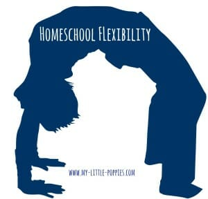 Homeschool Flexibility