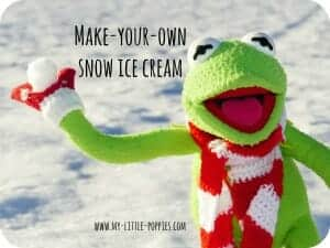 Make Your Own Snow Ice Cream