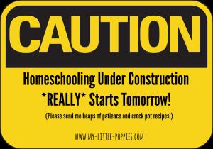 Homeschooling under construction ... still