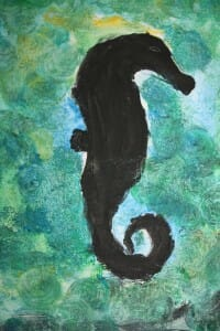 Shadow of a Seahorse