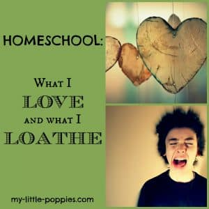 Homeschool Love and Hates