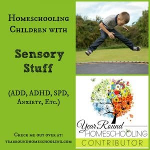 Homeschooling children with sensory stuff for MLP