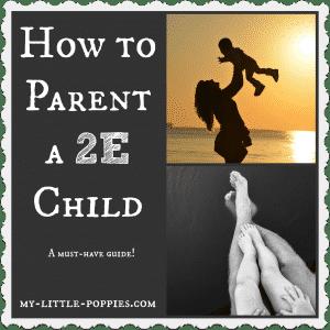 How to Parent a 2E Child