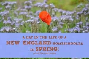 Day in the Life of a New England Homeschooler in SPRING