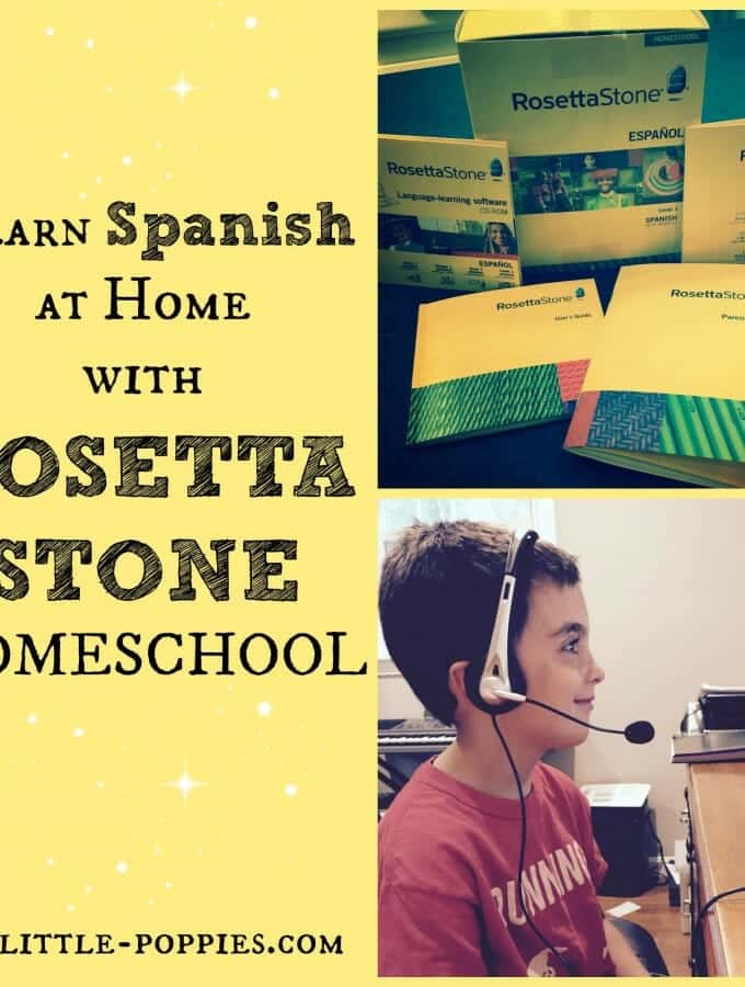 rosetta stone, homeschool, language learning, home education, homeschooler, homeschooling curriculum