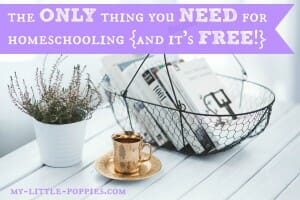 library library card homeschool homeschooling budget free affordable curriculum