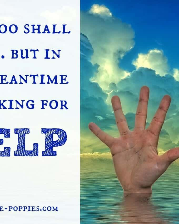 This Too Shall Pass… but in the meantime, I'm asking for help