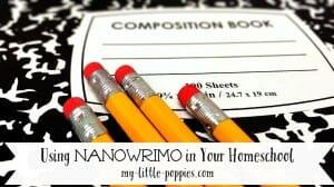NaNoWriMo, National Novel Writing Month, YWP, Young Writer's Program, children, kids, writing, November, writers, authors, books, novels