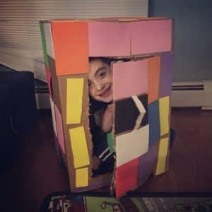cardboard 5