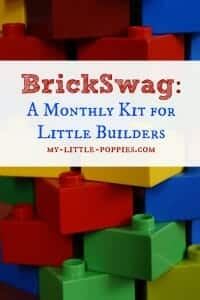 BrickSwag: A Monthly Building Kit BrickSwag A Monthly Kit For Little Builders and LEGO Lovers!