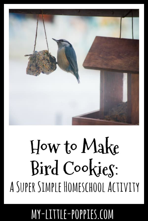How to Make Bird Cookies: A Super Simple Homeschool Activity | My Little Poppies