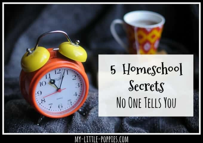 5 Homeschool Secrets No One Tells You