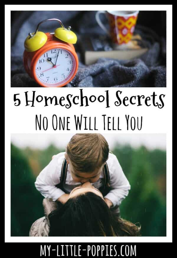 5 Wonderful Homeschool Secrets No One Will Tell You | My Little Poppies