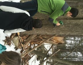 maple syrup, maple sugar, sugaring, unit study, homeschool, homeschooling, tap my trees, make your own maple syrup