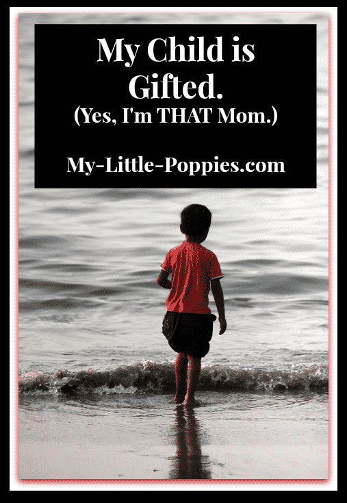 gifted, giftedness, gifted learner, twice exceptional, 2e, parenting, homeschool