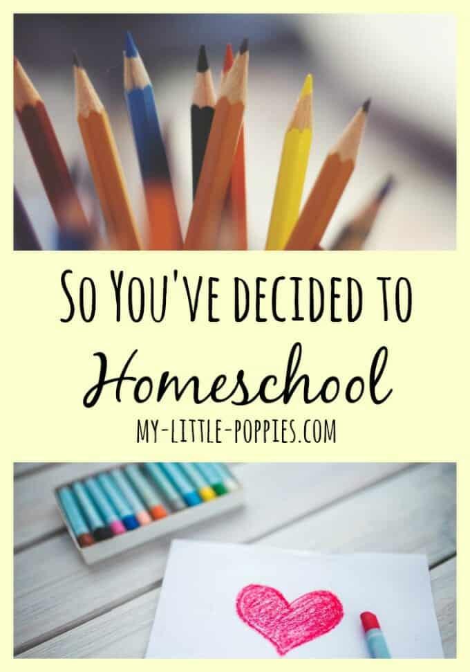 So You've Decided to Homeschool Pin, homeschooler, homeschooling, education