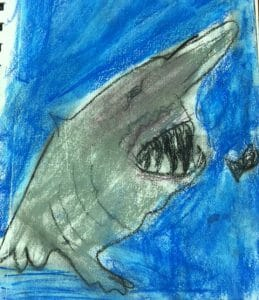 Shark Week in Your Homeschool, shark week homeschool