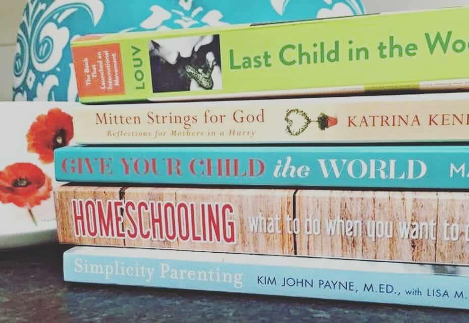 poolside professional development my little poppies, education books, homeschool books, summer reading, parenting books, reading, homeschooling, homeschooler